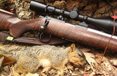 Squirrel Hunting Rifle